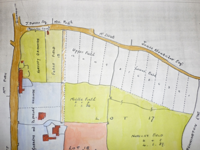 Colour map 1850.jpg